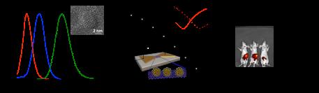 Turyanska-nanocrystals